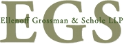Logo for Moderator: Douglas S. Ellenoff, Partner,  Ellenoff Grossman & Schole LLP 